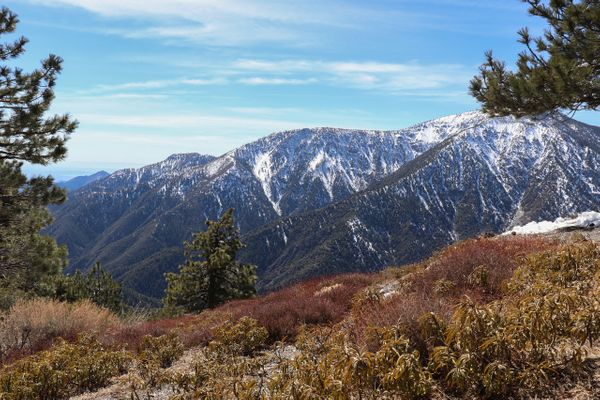 Top 3 Short Hikes in Wrightwood